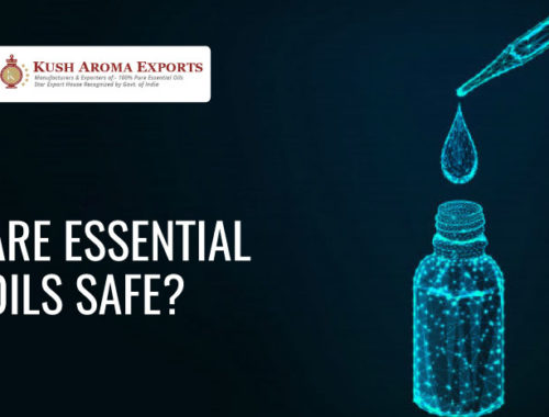 are essential oils safe