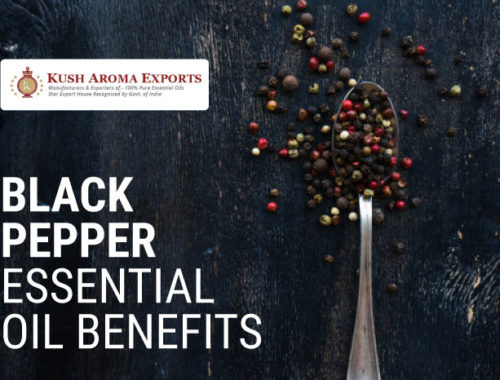 Black-Pepper-Essential-Oil-Benefits.jpg
