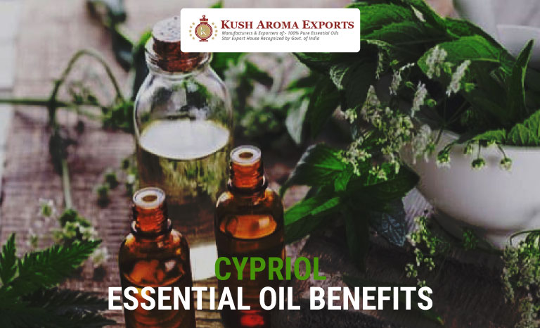 cypriol-essential-oil-benefits