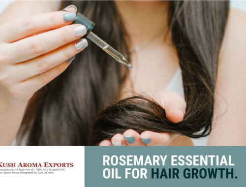 rosemary-essential-oil-for-hair-growth.jpg