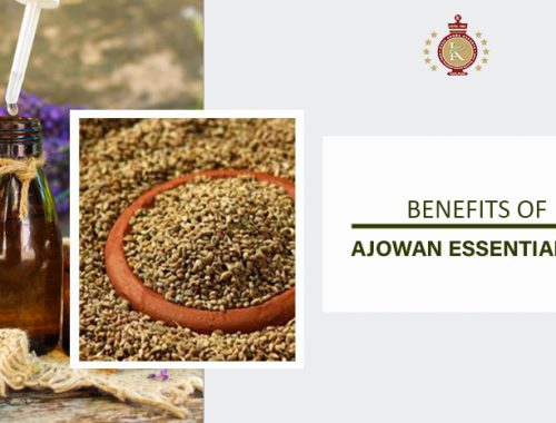 ajowan essential oil benefits