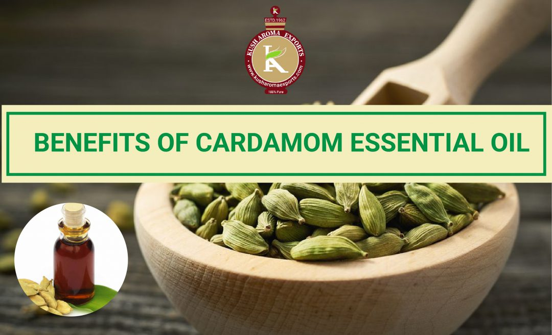 benefits of cardamom essential oil