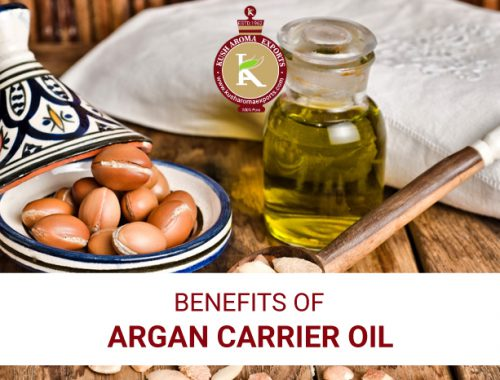 benefits of argan carrier oil