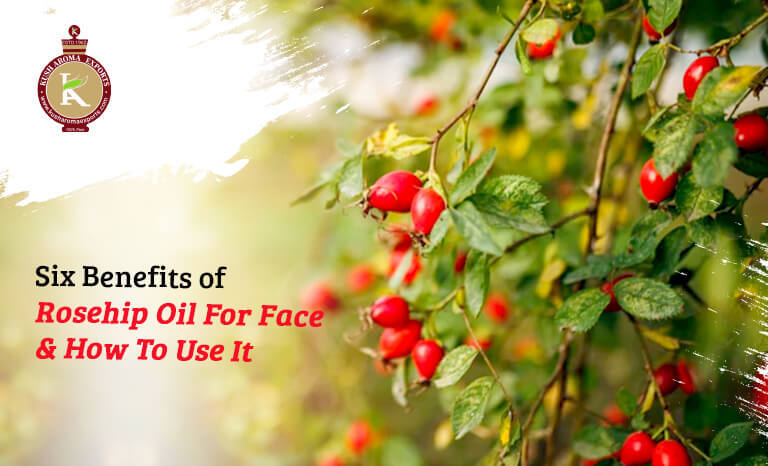 benefits of rosehip oil for face