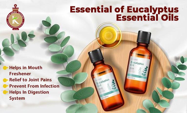 best essential oil wholesale distributor