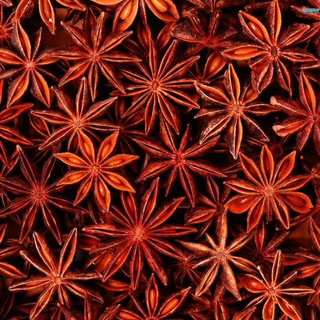 Anise Star Essential Oils 2
