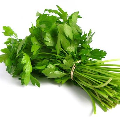 Coriander Essential Oil Egypt 5