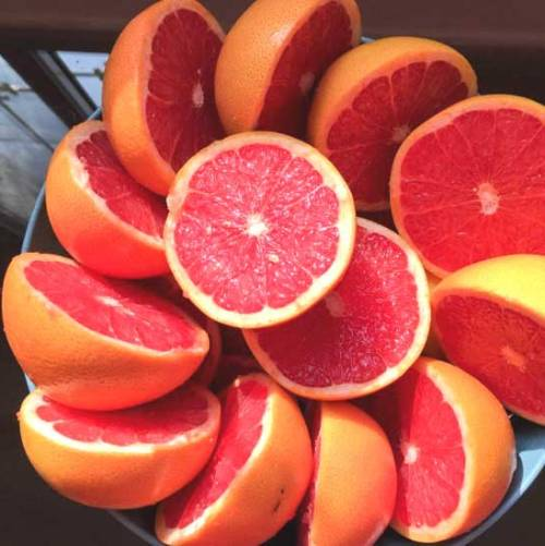 Grapefruit Pink Natural Blend Essential Oil 5