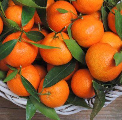 Mandarin Sicily Essential Oil 2