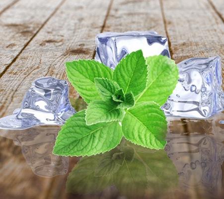 Mint Oil  4