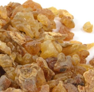 Myrrh Essential Oil Egypt 2