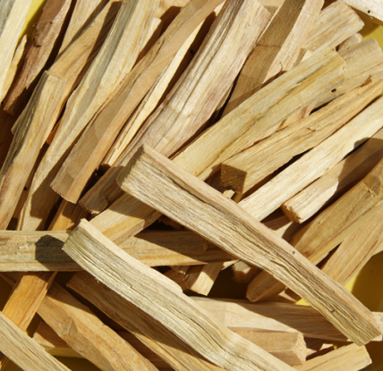 Palo Santo Essential Oil 3