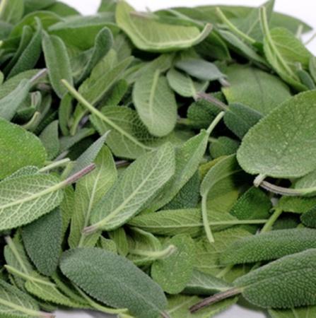 Sage Organic Essential Oil 3