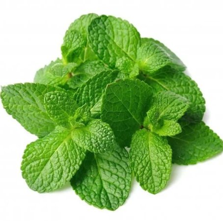 Spearmint India Essential Oil 5
