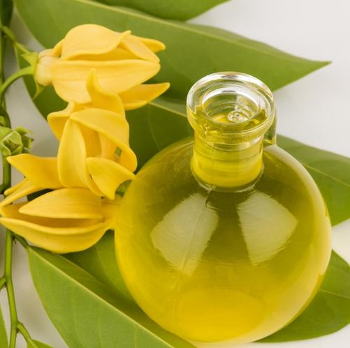 Ylang Ylang Essential Oil three 2