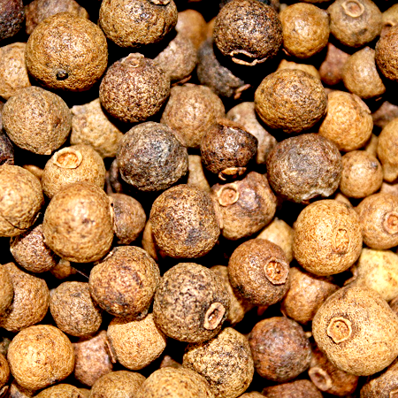 Allspice Pure &  Natural Essential Oils