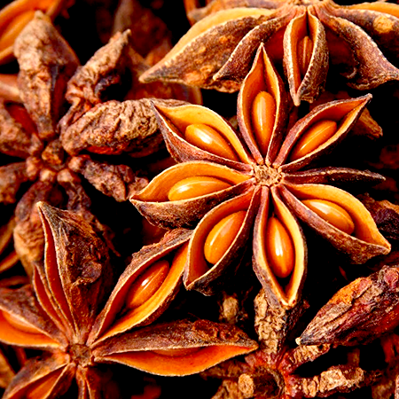 Anise Star Essential Oils