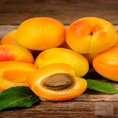 Apricot Kernel Carrier Oil
