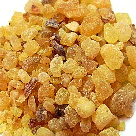 Frankincense Essential Oil India