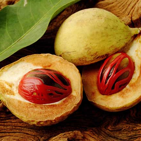 Nutmeg oil - Certified Organi