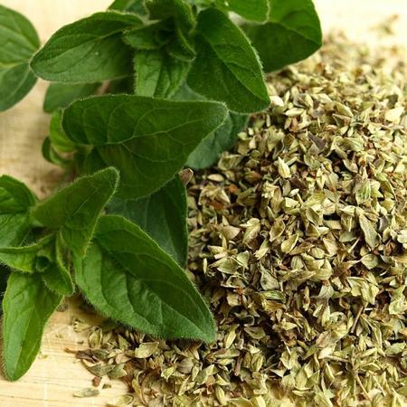 Oregano Organic Essential Oil