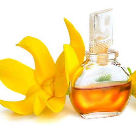 Ylang-Ylang CO2 Extracts Essential Oils