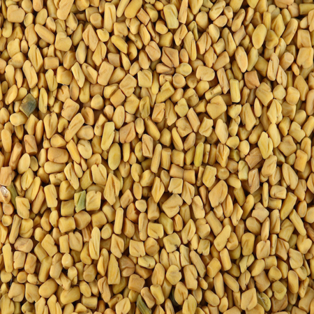 Fenugreek Oils 1