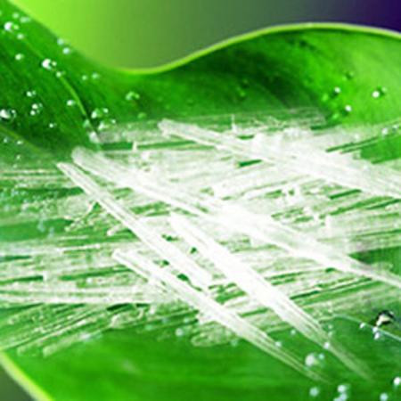 L-Menthol 90% Peppermint Oils