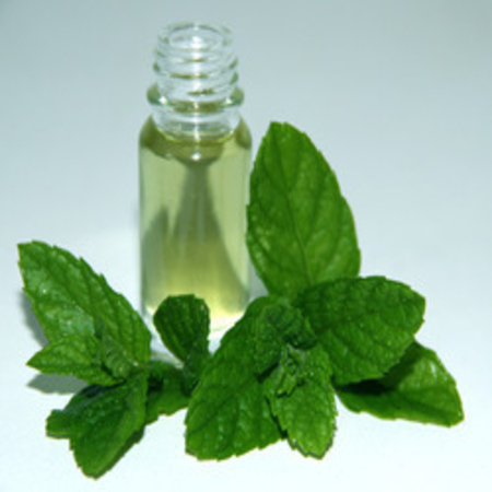 Mentha Piperata Peppermint Essential Oils