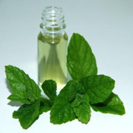 Mentha Piperata Peppermint Essential Oils
