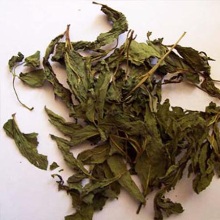 Mentha Piperita Peppermint Oils (Ex-Piperita)