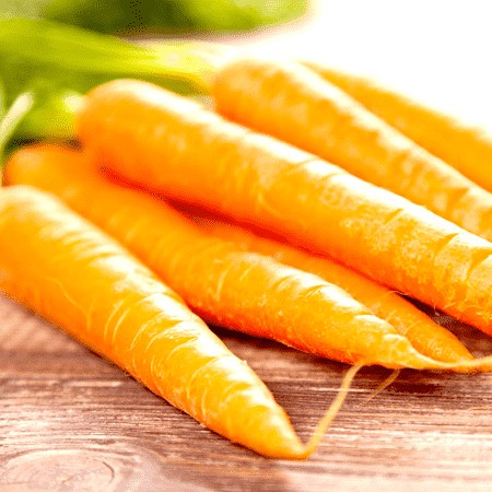 Carrot Seed Essential Oil Steam Distilled