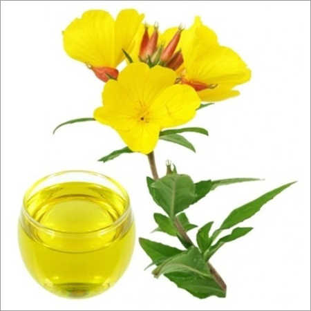 Evening Primrose Carrier Oil (Unrefined)