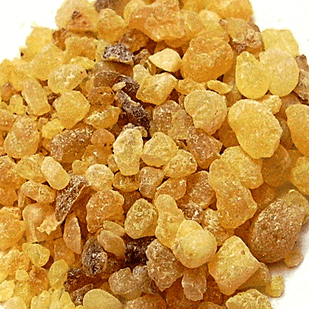 Frankincense Essential Oil India