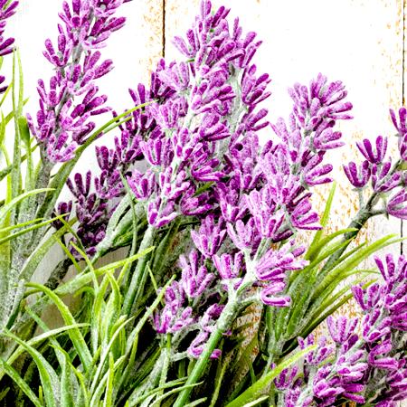 Lavender Essential Oil Bulgarian
