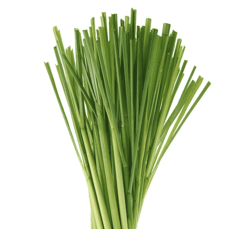 Lemongrass Pure & Natural Floral Waters