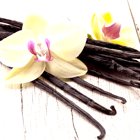 Vanilla Oleoresin 10 Fold Essential Oil