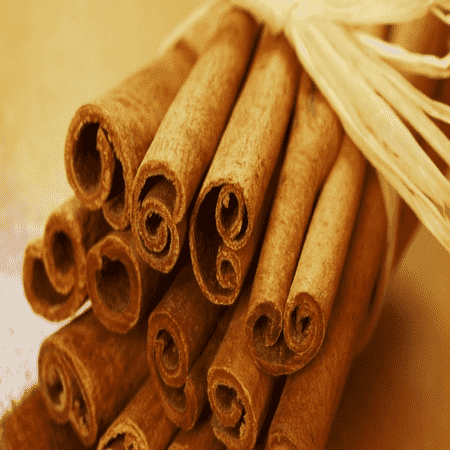 Cinnamon Bark Oils