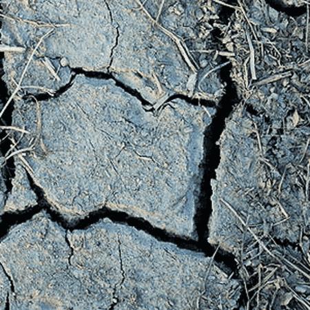Earth Soil Attar