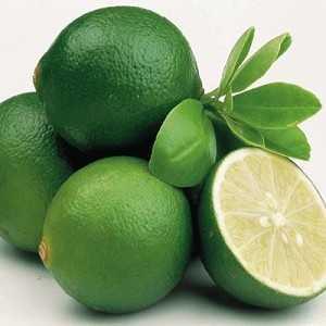Lime Essential Oil - Key Lime Peru