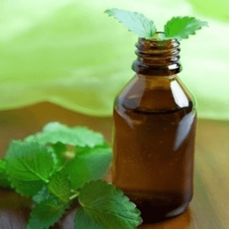 Mentha Spearmint Peppermint Essential Oils